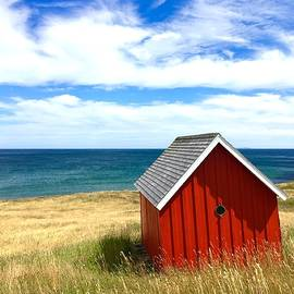 Seascape With Red Cabin by Cristina Stefan