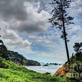 Seaside Paradise by Deborah Klubertanz