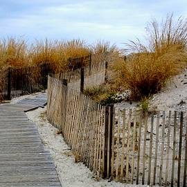 Seaside Walkway by Arlane Crump