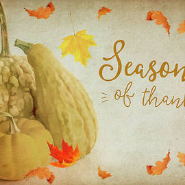 Cathy Kovarik - Season of Thanks