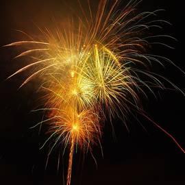 Seaworld Fireworks 2 by Phyllis Spoor