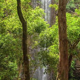 Secret Falls 3 - Kauai Hawaii by Brian Harig