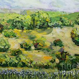 Secret Mound by Allan P Friedlander