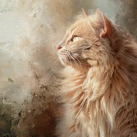 Jai Johnson - Seeking Spring Cat Art