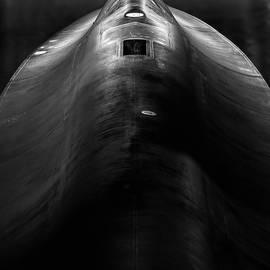 Semper Vigilo by Jay Beckman