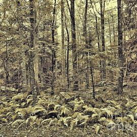 Sepia Landscape by Jeff Breiman