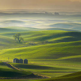 Andy Wu - Serene View