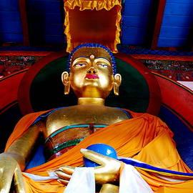 Bindu Viswanathan - Serenity