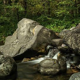 Saija Lehtonen - Serenity Creekside