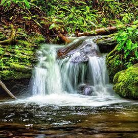 Debra and Dave Vanderlaan - Serenity Falls