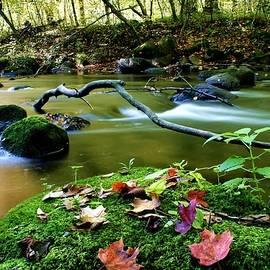 Serenity Stream by Neal Nealis