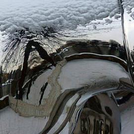 Globe Snow #4. by Alexander Vinogradov