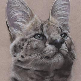 Jonathan Anderson - Serval Cat