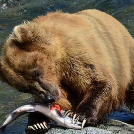 Patricia Twardzik - Serving up Salmon Grizzly Style