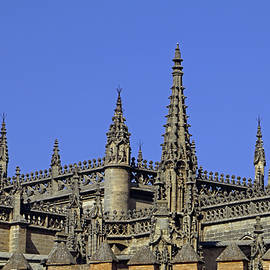 Seville Cathedral Roof by Tony Murtagh
