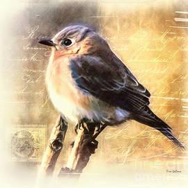 Tina LeCour - Shabby Chic Bluebird