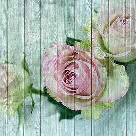Joy of Life Art Gallery - Shabby Chic Pink Roses On Blue Wood