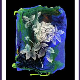 Grace Iradian - Shadow box -Single Rose