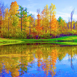Barbara Molocznik - Shadow Lake in Fall