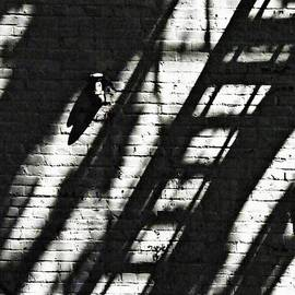 Shadow on the Wall 2 by Sarah Loft