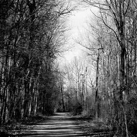 Shadow Walk by Shawna Rowe