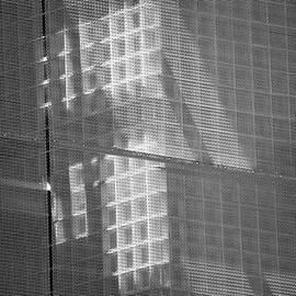 Dennis Knasel - Shadows and Light