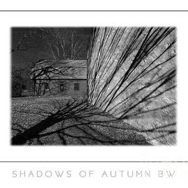 Mike Nellums - Shadows of Autumn BW poster