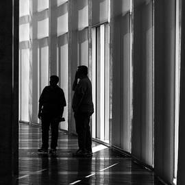 Shadows of Crystal Bridges by Steven Bateson