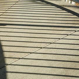 Karol Livote - Shadowy Lines