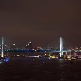 Shanghai Nanpu Bridge by Leanne Lei