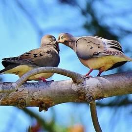 Sharing is Loving 1 by Linda Brody