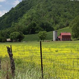 Shawsville Farm
