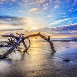 Shimmering Sands by Debra and Dave Vanderlaan