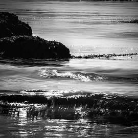 Marnie Patchett - Shining Sea