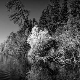 Allan Van Gasbeck - Shores of Loon Lake Provincial Park