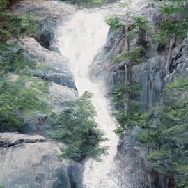 Sierra Waterfall by Sunny Franson