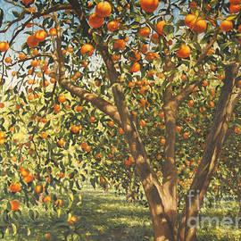 Silence under the oranges I, 2012 - Angus Hampel