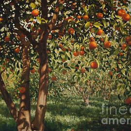 Silence under the oranges II - Angus Hampel