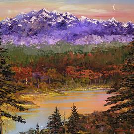 David Lloyd Glover - Silent Vision