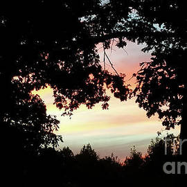 Donna Brown - Fall Silhouette Sunset