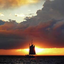 David T Wilkinson - Silhouette Sunset Sail