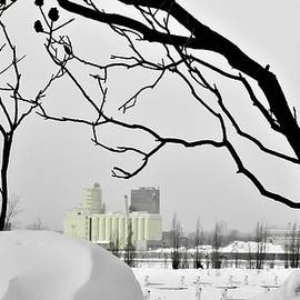 Silos In The Winter On Saint Laurent River by Cristina Stefan