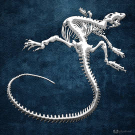 Silver Iguana Skeleton on Blue Silver Iguana Skeleton on Blue