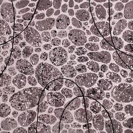 Silver Pebbles Abstract by Olga Zavgorodnya