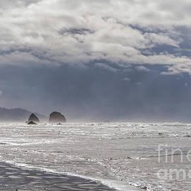 Marv Vandehey - Silver Point Sea Stacks
