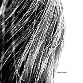Silver Queen by VIVA Anderson
