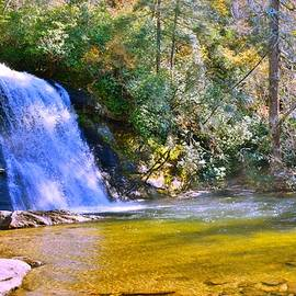 Silver Run Falls Nc In Autumn by Lisa Wooten