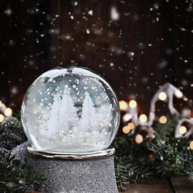 Stephanie Frey - Silver Snow Globe