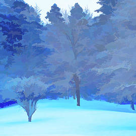Simply Blue Fresh Snow Scene by Aimee L Maher ALM GALLERY