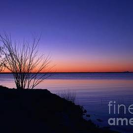 Simply Gentle Blue by Diana Mary Sharpton